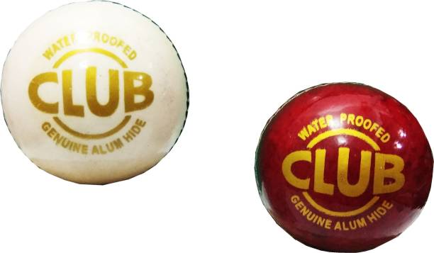 Sun Fly Club Cricket Leather Ball