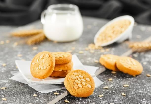 BADSHAH MILK RUSK Pack of 3 - Beeja Cookies - 300g each pack Cookies