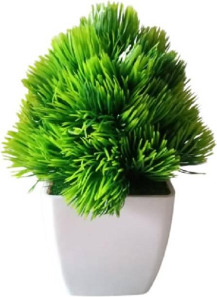 KAYKON Mini Artificial Money Plant Bonsai Green Tree With Pot - 6 Inch/15 Cm Bonsai Wild Artificial Plant  with Pot