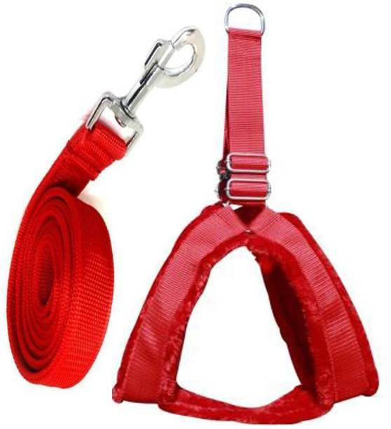 DSW Dog Harness & Leash