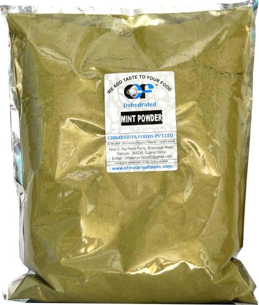 Chhatariya Foods MINT POWDER 900