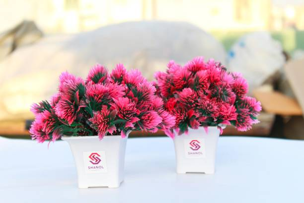 Sanol Artificial Pink flowers plant, wild pink plant with heavy plastic Pot, Bonsai and plant, Wild Artificial Plant, Decorative flowers Artificial plants with Pot for Office Table Living Room Indoor decoration garden Home Decoration (, colour :- pink, set of 2)....;) Wild Artificial Plant  with Pot