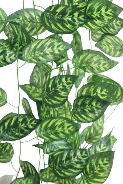 Petalicious Green Wild Flower Artificial Flower