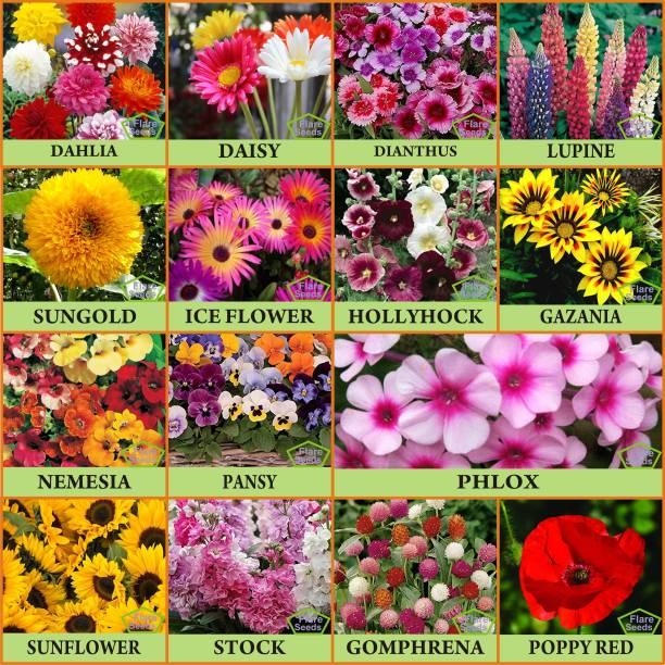 FLARE SEEDS 15 Varieties Flower Combo for Terrance Garden Seed
