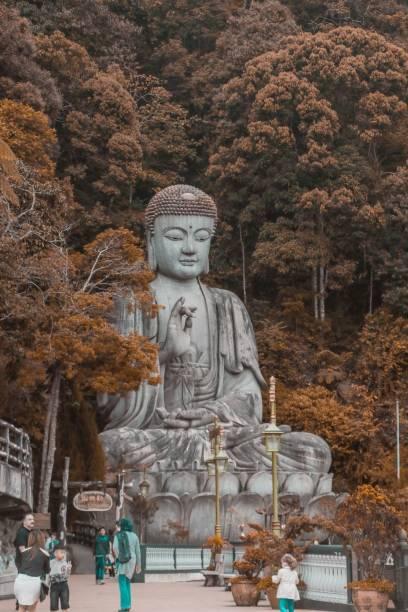 Chin Swee Caves Buddha wallposter Fine Art Print