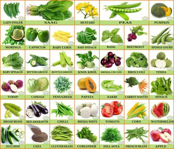 FLARE SEEDS 40 Varieties Vegetable Seeds Combo Pack 2250+ Seeds Seed