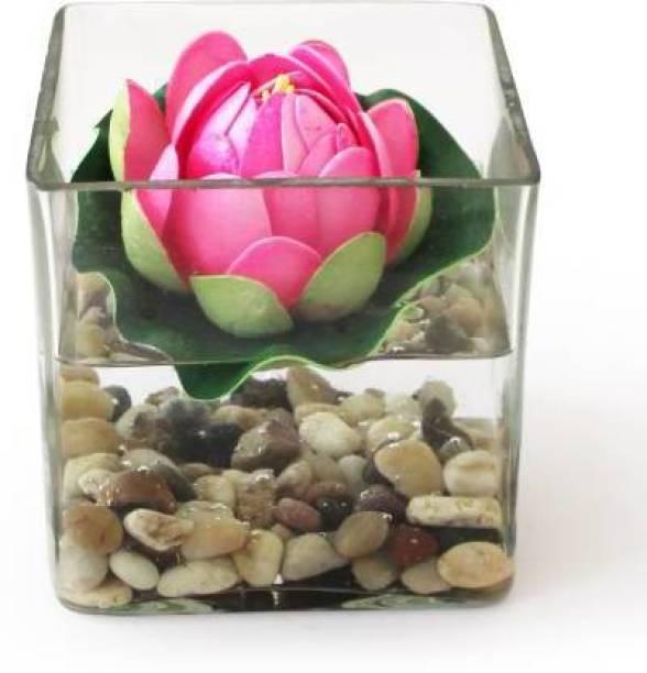 Myska Mys_size:4inch Vase Filler