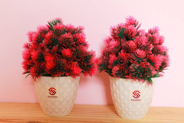 shanol :) Shanol :) Artificial Pink flowers plant, wild pink plant with heavy plastic Pot, Bonsai and plant, Wild Artificial Plant, Decorative flowers Artificial plants with Pot for Office Table Living Room Indoor decoration garden Home Decoration (length :- 20 cm, colour :- pink, set of 2)....;) Wild Artificial Plant  with Pot