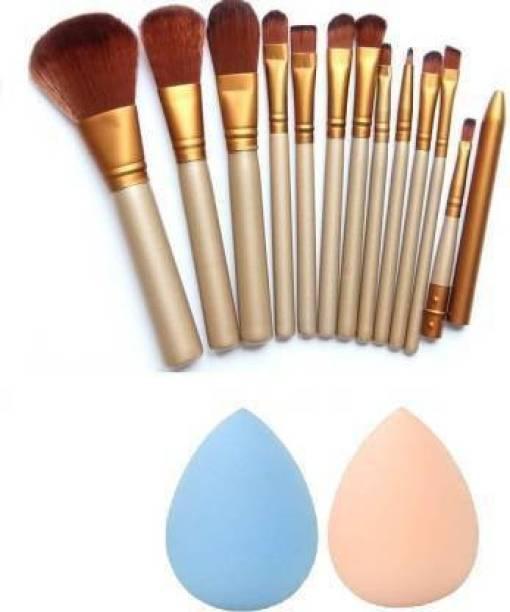 GLOW MORE Makeup Brush Set Of 12 + 2 Pcs Menow Beauty Blender