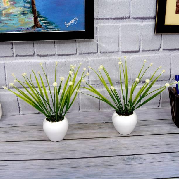 Flipkart SmartBuy White Wild Flower Artificial Flower  with Pot