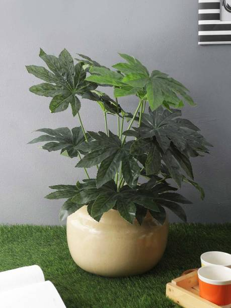 FOURWALLS Beautiful Artificial Miniature PVC Silk Floor Plant with Big Leaves and Without Pot (18 Leaves, 65 cm Tall, Green) Artificial Plant