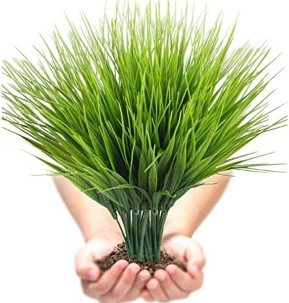 Satyam Kraft Artificial Plant Wheat Grass for Home Decoration and Craft Artificial Plant