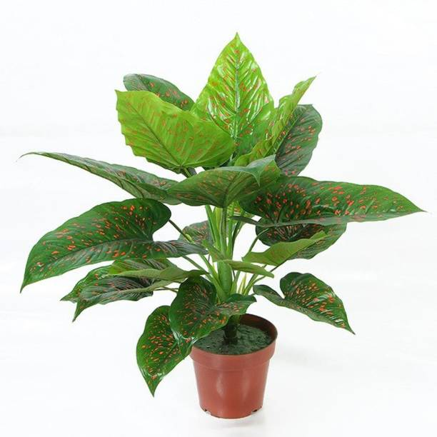 FOURWALLS Beautiful Artificial Miniature PVC Silk Plant with big Leaves and without pot (21 Leaves, 60 cm Tall, Green/Red) Artificial Plant