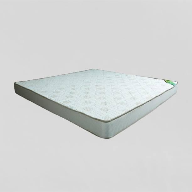 SLEEPFRESH Flexigold Plus 6 inch Queen PU Foam Mattress