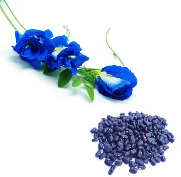 Flipkart SmartBuy Butterfly Pea Blue, Aprajita Seed