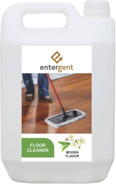 ENTERGENT Disinfectant Surface/Floor Cleaner - 5 L (MOGRA), Pack of 1 MOGRA