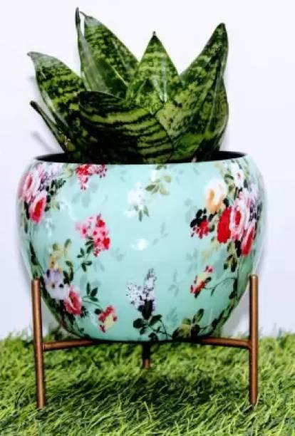 Option Gallery Steel Vase