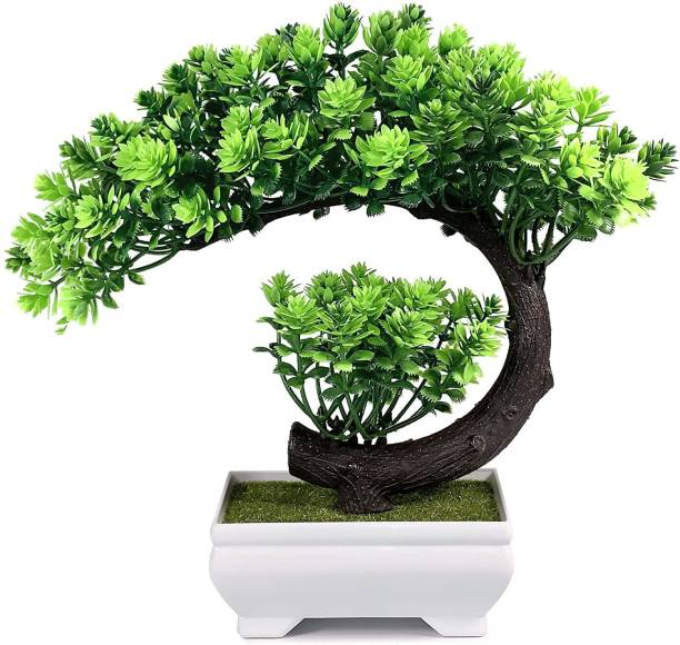 Dekorly Bonsai Wild Artificial Plant  with Pot