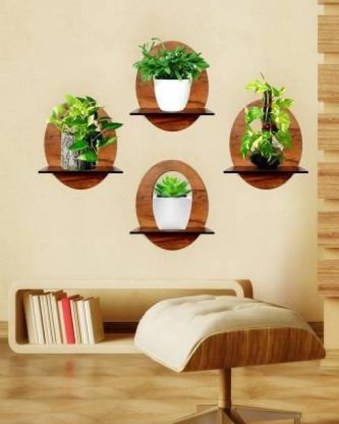 Wallwey décor SELF2031 Engineered Wood Display Unit