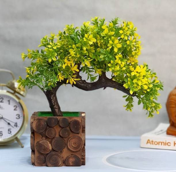 Flipkart SmartBuy Bonsai Wild Artificial Plant  with Pot