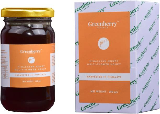 Greenberry Organics Himalayan Multi Flower Honey, Harvested & Sourced from the Himalayas, Natural & Preservative FREE, No Added Sugar, 250 Gram (Glass Jar)