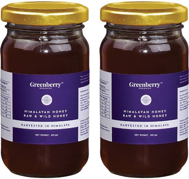 Greenberry Organics Himalayan Harvested Raw & Wild Honey, Pure & Natural, Beehive Harvested, Glass Jar, ZERO Preservatives & Sugars, 250 Gram Pack Of 2