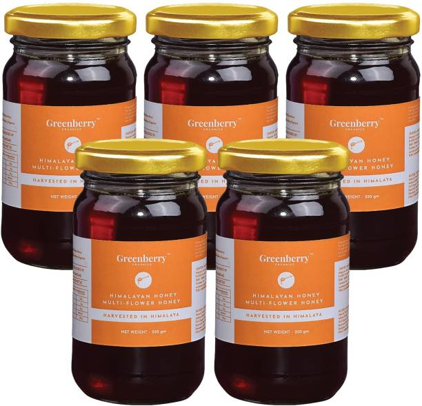 Greenberry Organics Himalayan Multi Flower Honey, Harvested & Sourced from the Himalayas, Natural & Preservative FREE, No Added Sugar, 250 Gram (Glass Jar) Pack Of 5