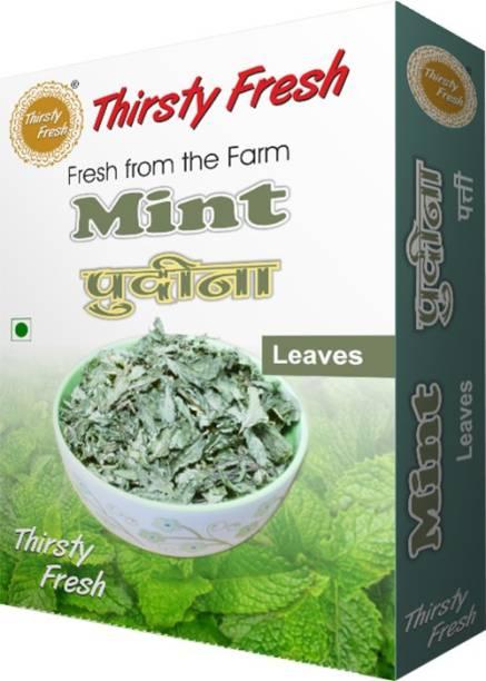 Thirsty Fresh Dry Mint Leaves