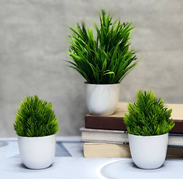 Flipkart SmartBuy Set of 3 All Diverse Great for home office , Gift Bonsai Artificial Plant  with Pot