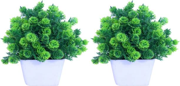 NERAPI Green Wild Flower Artificial Flower  with Pot