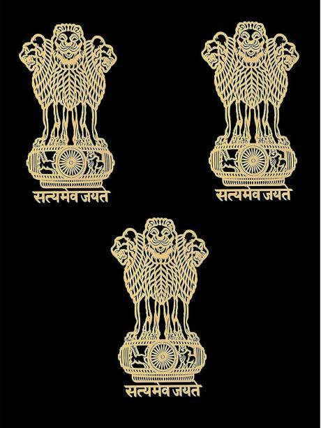 fenotic Satyamev Jayate Mobile Skin