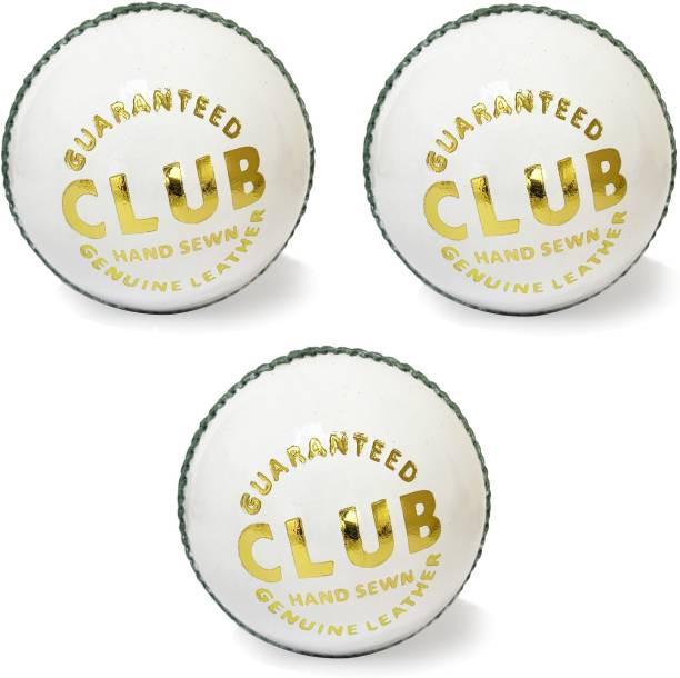AGGIENext Cricket Ball 2 Cricket Leather Ball