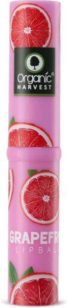 Organic Harvest Grapefruit Flavour Lip Balm Enriched With Vitamin E & Benefits Of Mango Butter, For Dark Lips to Lighten, Lip Care for Dry & Chapped Lips, 100% Organic, Paraben & Sulphate Free For Girls & Women Grapefruit
