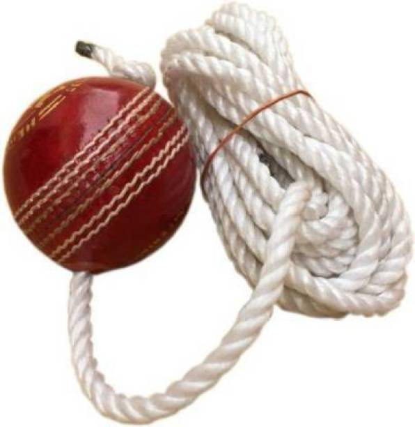 shourya trader leather practice cricket ball Cricket Leather Ball