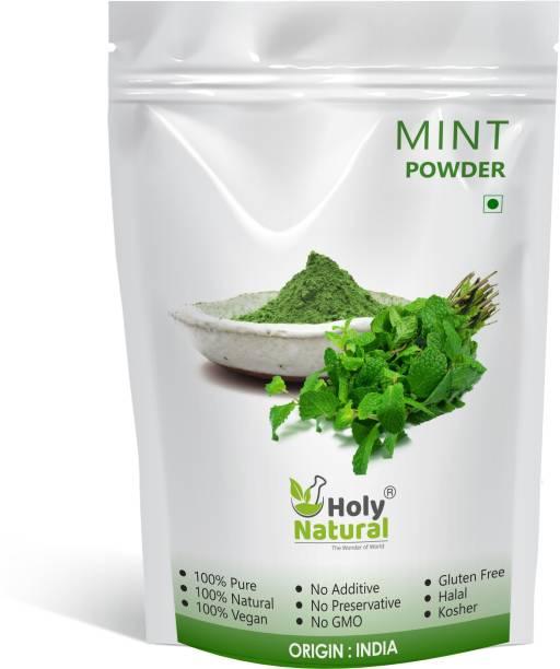 Holy Natural Mint Powder - 100 GM