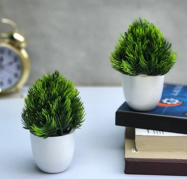 Litleo Set of 2 Small Size Great For Home Or Office Decoration or birthday Gift, Table Top Bonsai Wild Artificial Plant  with Pot