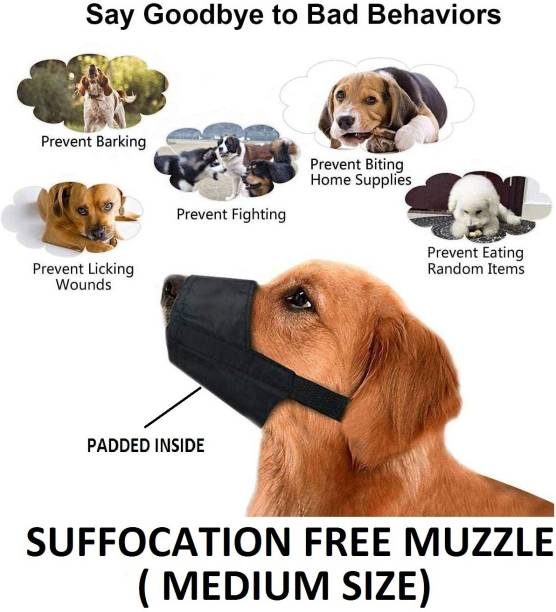 Hachiko Medium Other Dog Muzzle