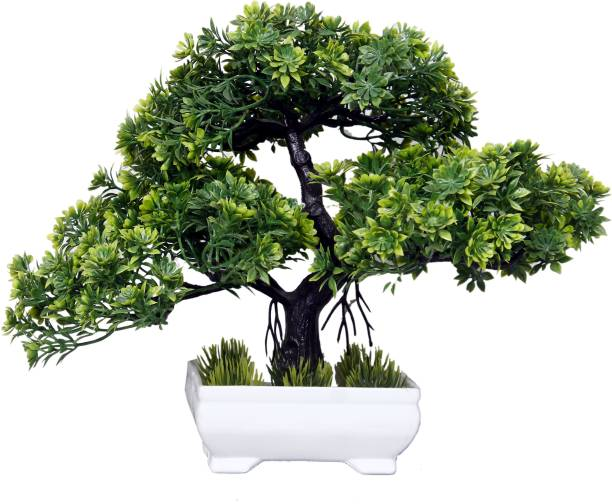 harsh enterpries Artificial Plant Bonsai Tree Indoor flower with Pot For Home Decoration, Office Table Bonsai Wild Artificial Plant  with Pot
