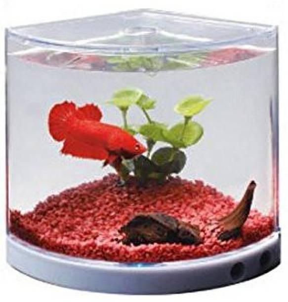 Pawwfect Elegant Betta Fish Tank - Dophin Mini T-101 Aquarium Betta Fish Mini Tank for Betta Fish and Guppies, Corner Pentagon Aquarium Tank