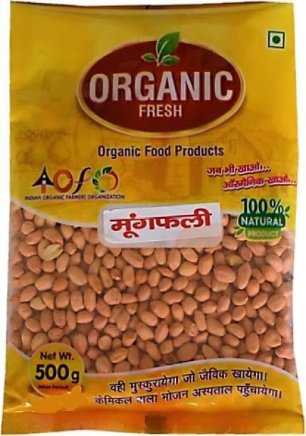 IOFO Organic Red Peanut (Whole)