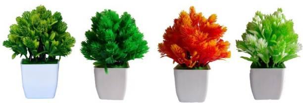 KAYKON 4 Bonsai Wild Artificial Plant  with Pot