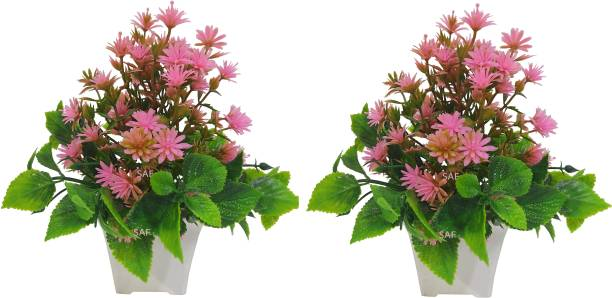 SAF SET OF 2 SMALL ARTIFICIAL PLANT WITH BEUTIFUL GREEN LEAVS Bonsai Artificial Plant  with Pot