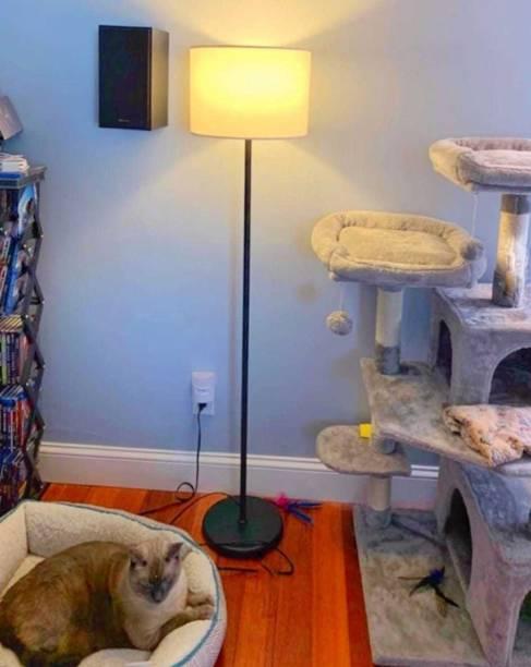 Timecast Club Floor Lamp
