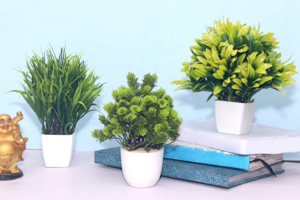 S-Biv Artificial Plant For Office Décor or Home Decor Also Flower & Plant Suitable For Table Specially Decor For Bed Room Decoration Bonsai Wild Artificial Plant with Pot (Green, Pack of 03) Bonsai Wild Artificial Plant  with Pot
