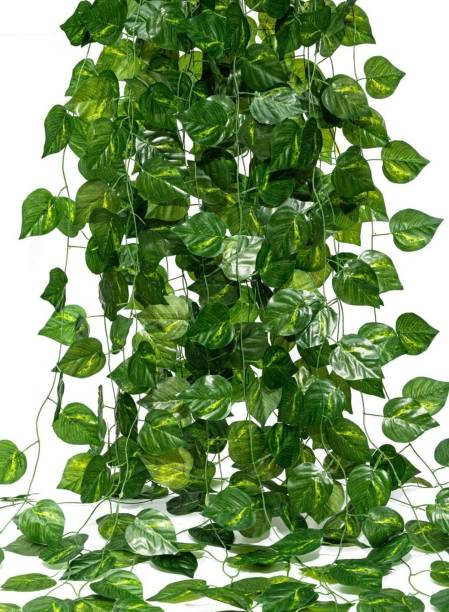 DecorOne Artificial Garland Money Creeper | Wall Hanging | Special Ocassion Decoration | Office | Festival Theme Decorative | Length 7-8 Feet Pack of 6 Strings Artificial Plant