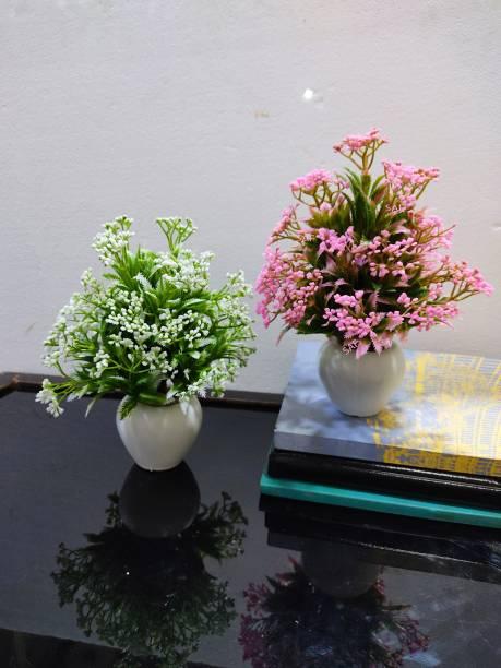 SAF Bonsai Wild Artificial Plant  with Pot