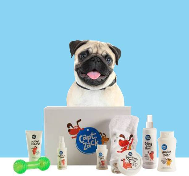 Captain Zack The Pug Groom Box Pet Spa Kit