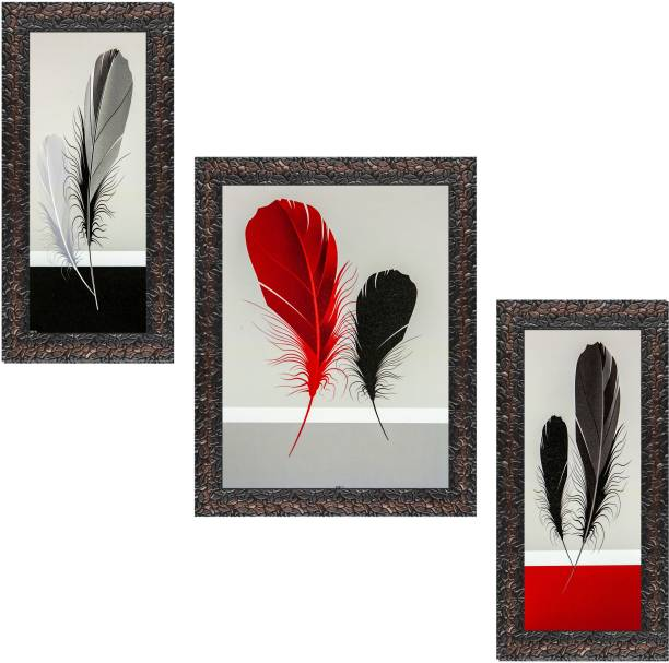 Indianara Set of 3 Colorful Feathers Framed Art Painting without glass 6 X 13, 10.2 X 13, 6 X 13 INCH (3078GBN) Digital Reprint 13 inch x 10.2 inch Painting