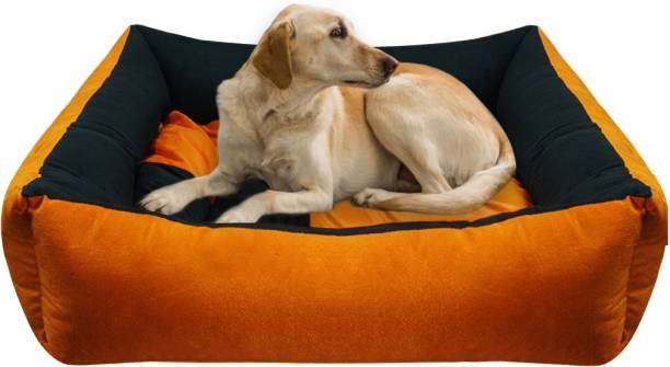 Hiputee Reversible & Rectangular Dog/Cat Bed with 2 Extra Pillows (FOR SMALL BREEDS) M Pet Bed