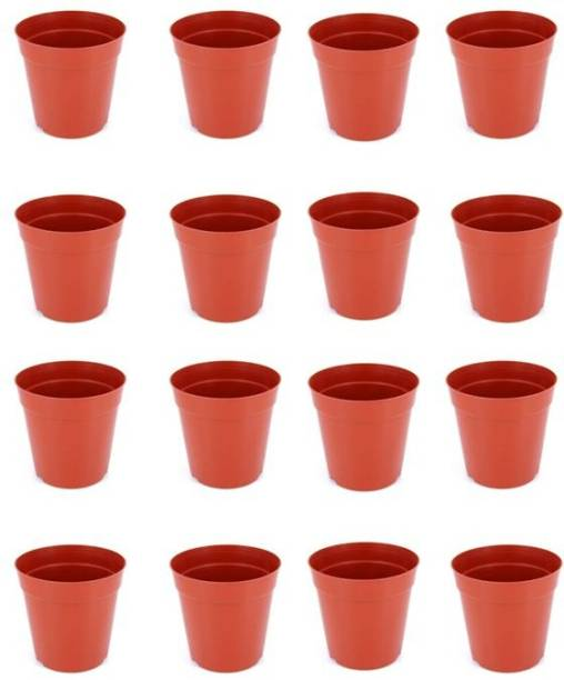 Naturally Green NURSERY POT MALTA 6 INCH PACK OF 20 Plant Container Set